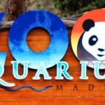 Oferta Parque Warner y Zoo de Madrid